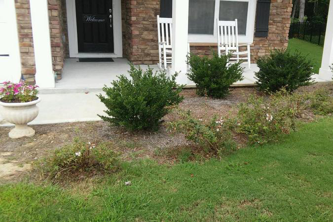 Before Landscaping 1